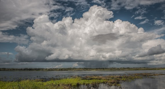 Florida Clouds at Myakka River State Park