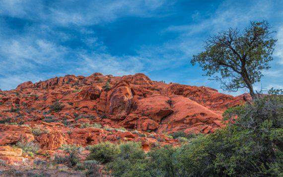 Red Rock Canyon – Las Vegas Nevada