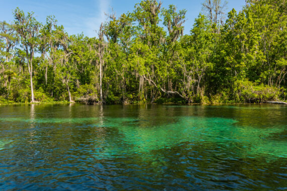 Silver Springs State Park, Florida – 2021