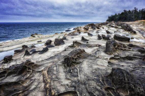 Shore Acres State Park – Coos Bay – Oregon – Part 1 – 2021